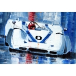 Modern GT racing and Le Mans books - last post by Seppi_0_917PA